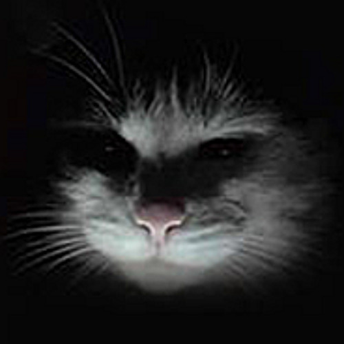Kreiz-PD's avatar