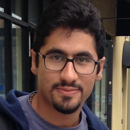 Reza Abbasi Asl's avatar