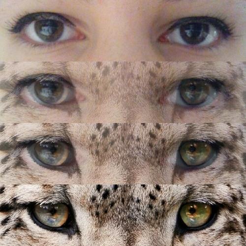 Suga&RapMon's avatar