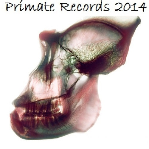 Primate Records's avatar