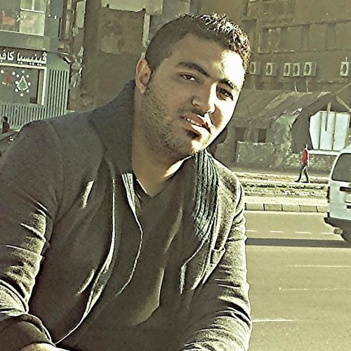 Mohamed Sayed Eid's avatar