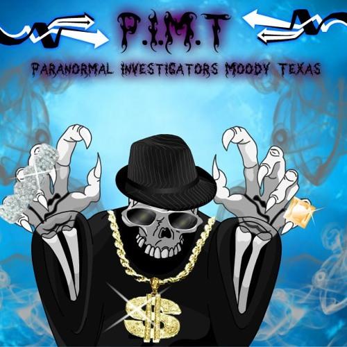 P.I.M.T Entities's avatar