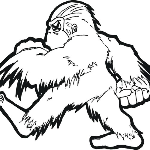 Chuck Cottrell's avatar