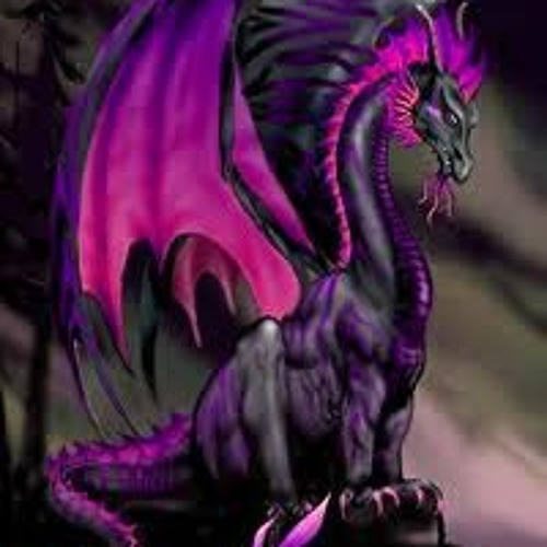 Lexi Feld's avatar