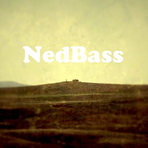 NedBass's avatar