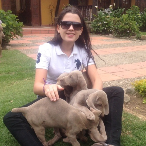 Maria Luzardo M. (New)'s avatar