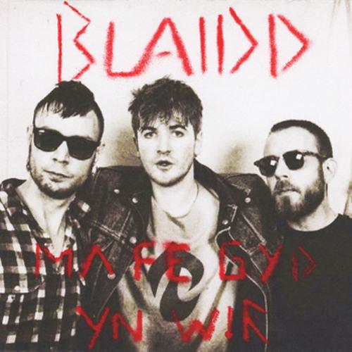 BLAIDD's avatar