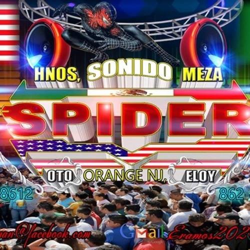 SonidoSpider1's avatar