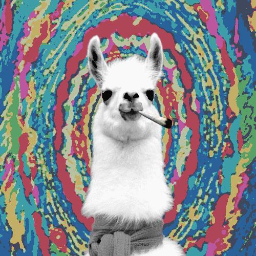 Trippy llama's avatar