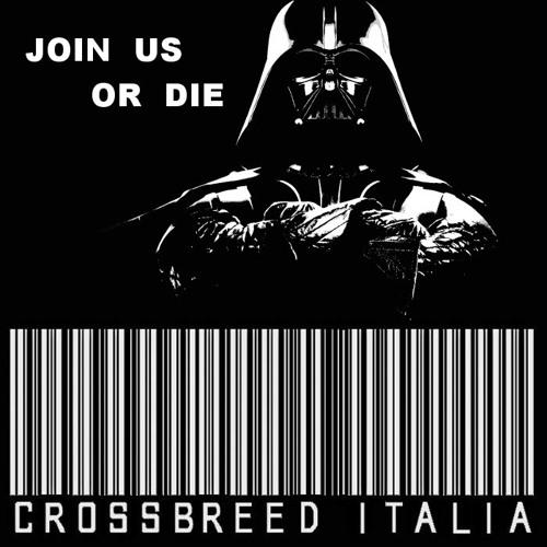 crossbreeditalia's avatar