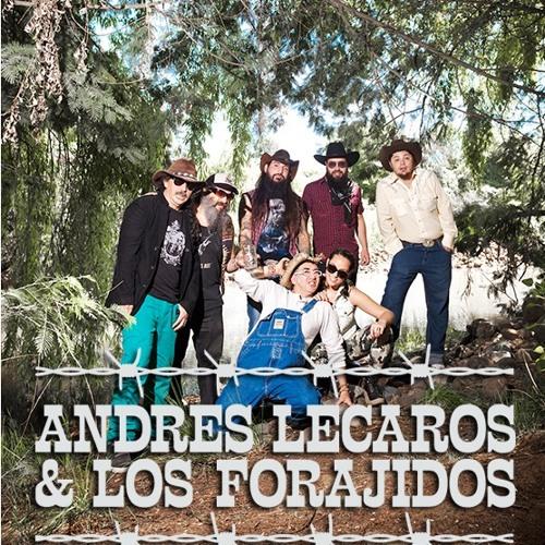 Andres Lecaros Forajidos's avatar