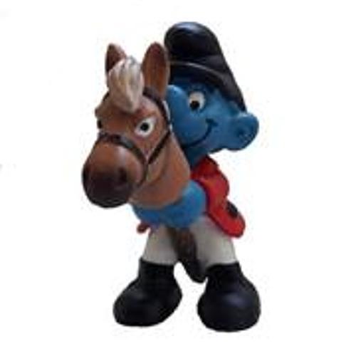 Kleiner Blauer Reiter's avatar