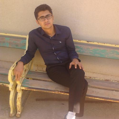 Reza Javanpour's avatar
