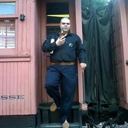 Roger Mendes Ferreira's avatar