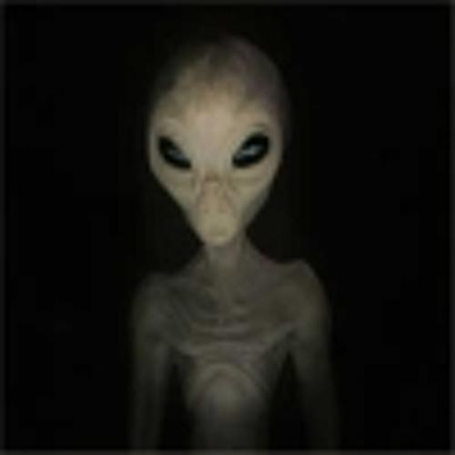Melihcan Fidanboy's avatar