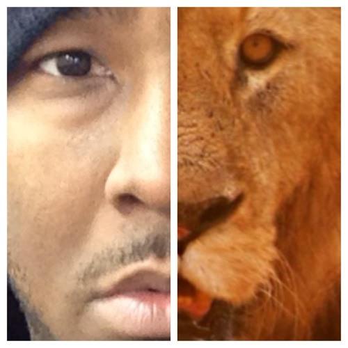 DaRoaring_Lion's avatar