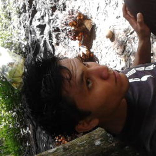 cosmarysuiza's avatar