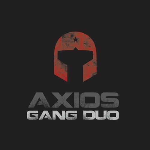axios gang duo's avatar