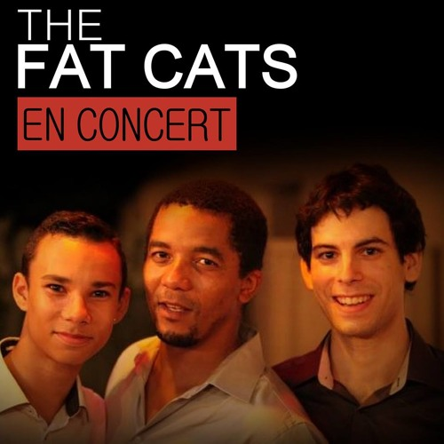 The Fat Cats (Blues/Funk)'s avatar
