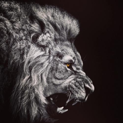 Vilkhou21's avatar