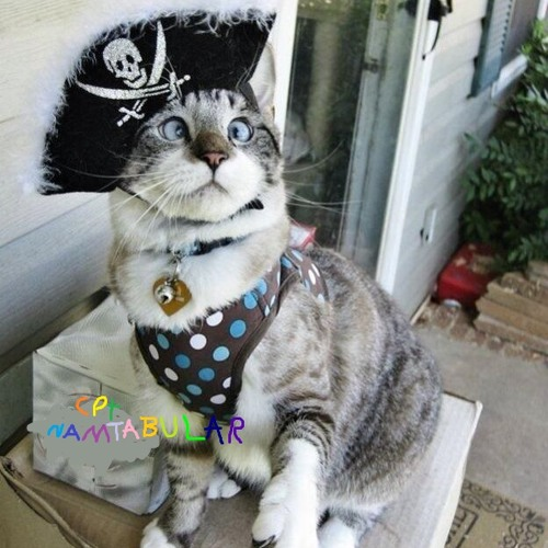 Captain Namtabular's avatar