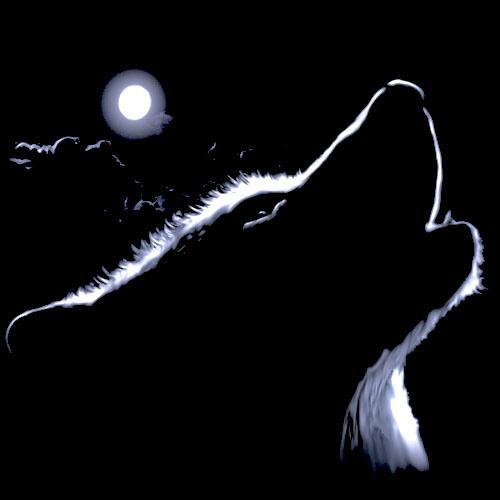 Winter-wolf's avatar