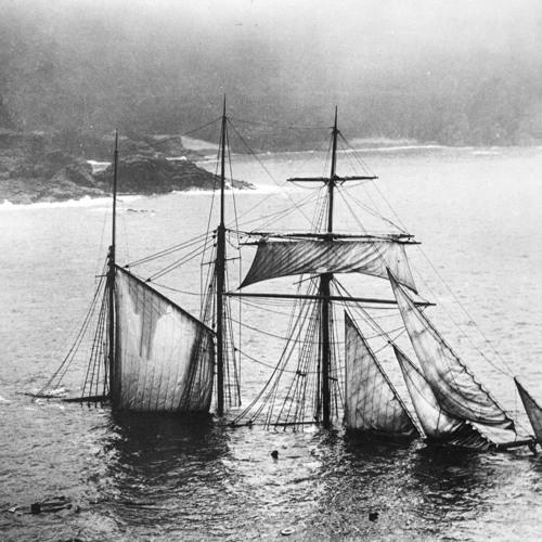 Remarkable Shipwrecks's avatar