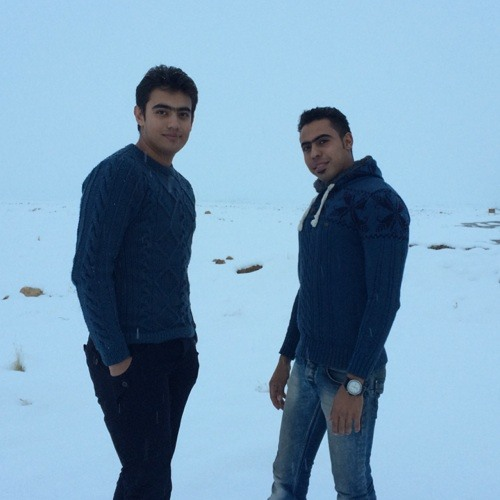 Mohamad reza's avatar