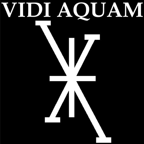 Vidi Aquam's avatar