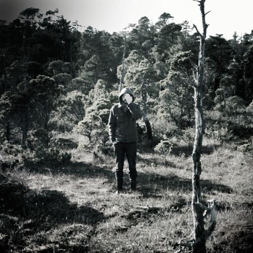Nicodimous's avatar