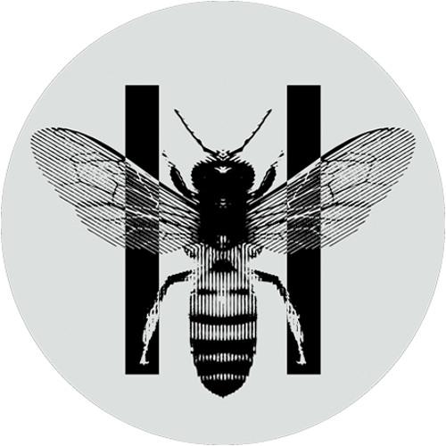 The I IYV's avatar