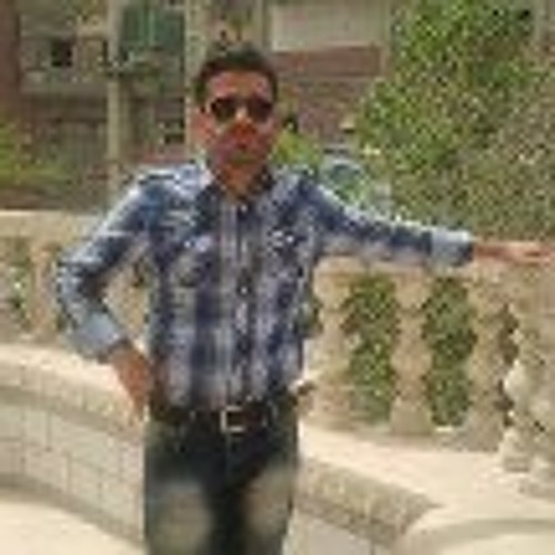 Alireza Mohammadi Zadeh's avatar