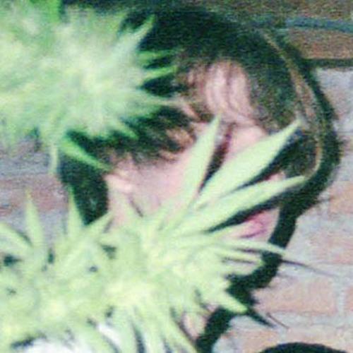 Bruno Gomez 3's avatar