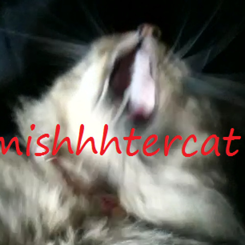 MishhhtercatOfficial's avatar