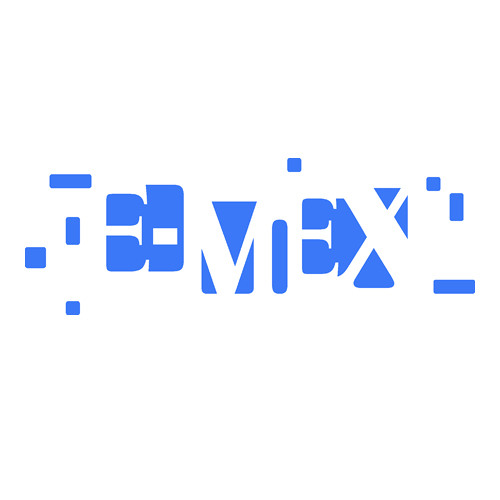 E-MEX-Ensemble's avatar