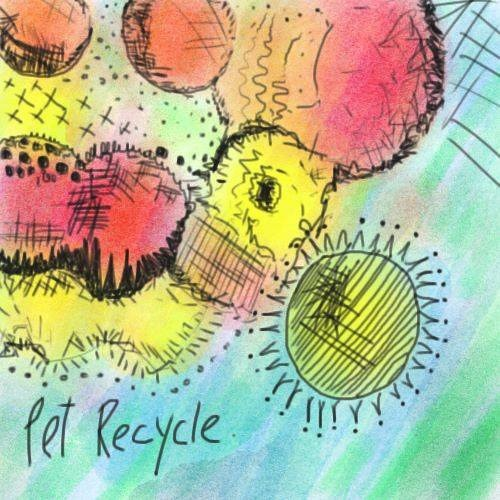 Pet Recycle's avatar