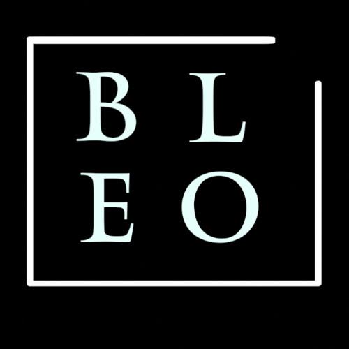 BleoMusic's avatar