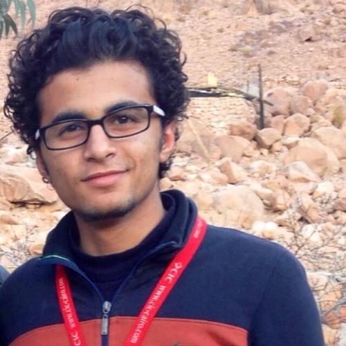 Mohamed Abdelsalam 4's avatar