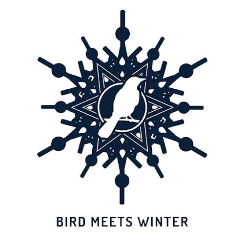 BirdMeetsWinterBand's avatar