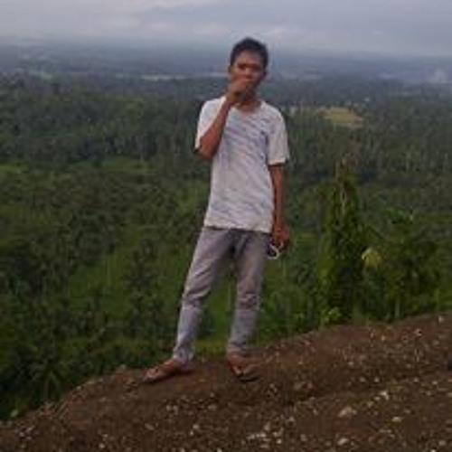 Piyan [S.O.R™]'s avatar