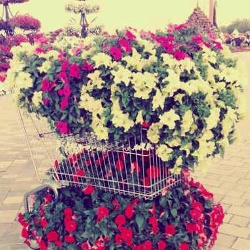 user637715063's avatar