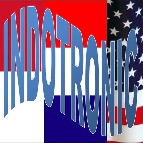 IndoTronic's avatar