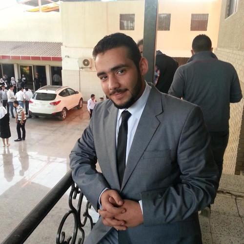 Hassan Hashim Fakhraldin's avatar