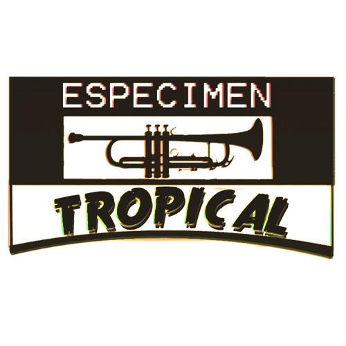 Especimen Tropical's avatar