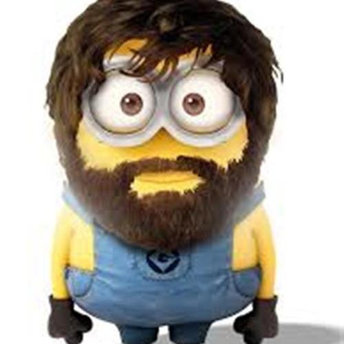 OriginalFleetFox's avatar