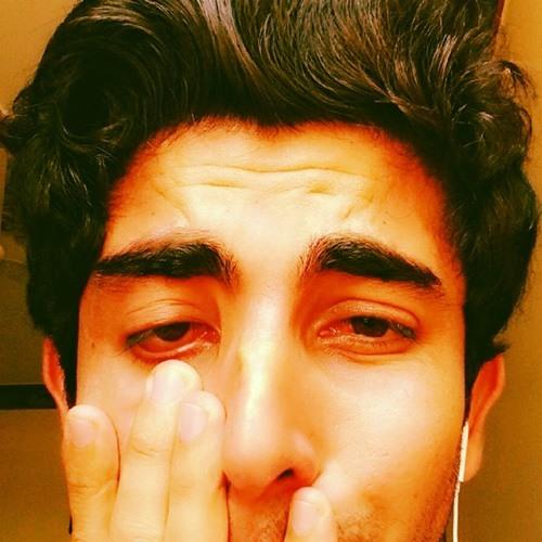 akhtarali.mehrjoo's avatar