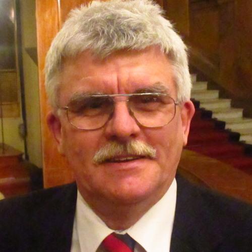 Roman Šmelhaus 1's avatar
