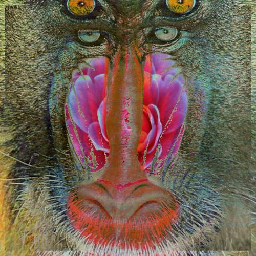 gullae's avatar