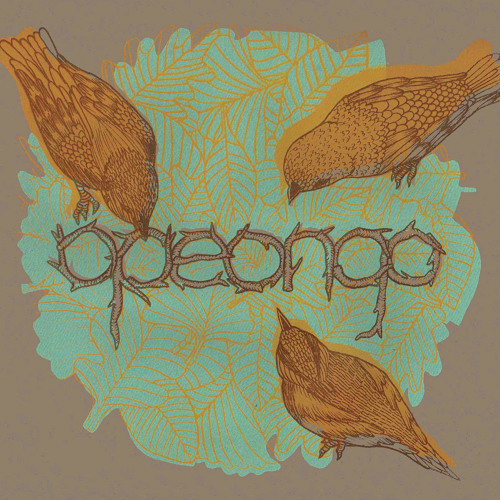 Opeongo's avatar