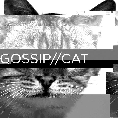 GOSSIP//CAT's avatar